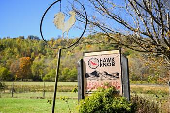 Hawk Knob